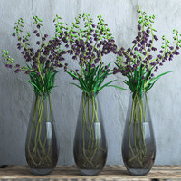 3d vase fritillaria flowers persica model