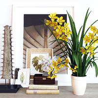 Decoration set Cymbidium Orchid