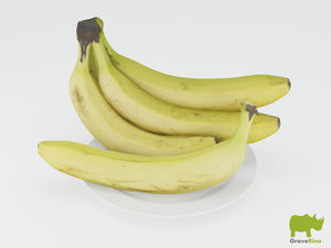 3d model bananas