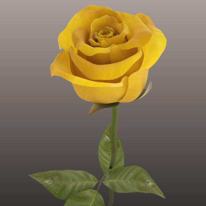 3d rose modeled leaf