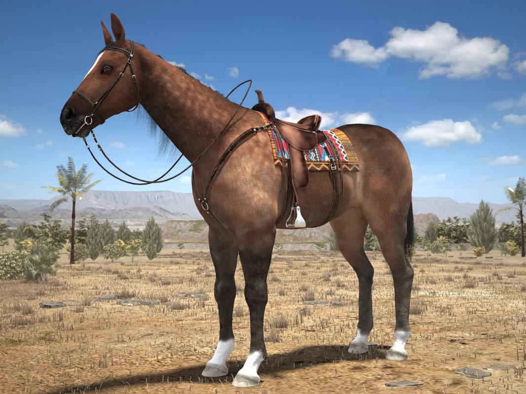 cowboy horse 3d c4d