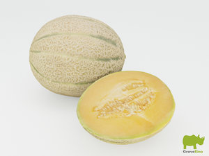 3d melons resolution model