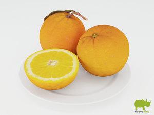 oranges resolution 3d max