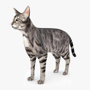 cat fur max