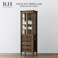 RH LOUIS XVI TREILLAGE MEDIUM BATH CABINET