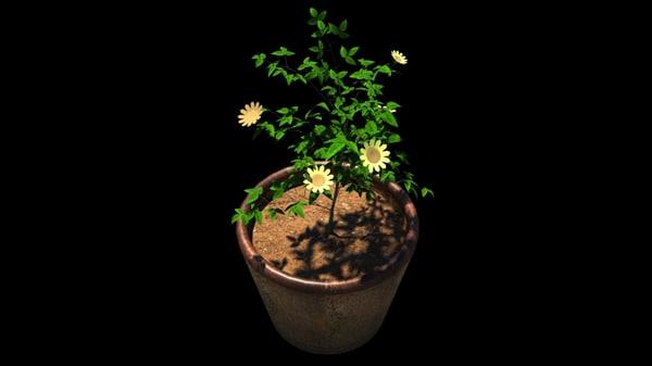 plant tub 3d ma