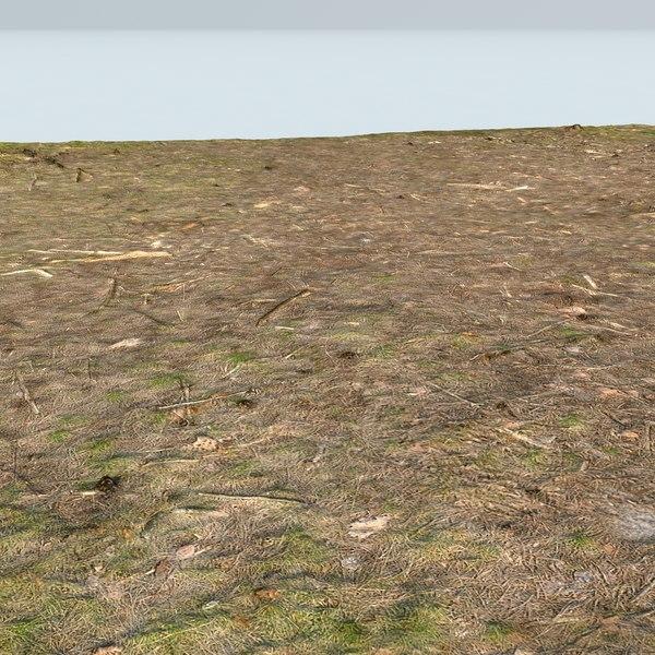 3d scan grass model