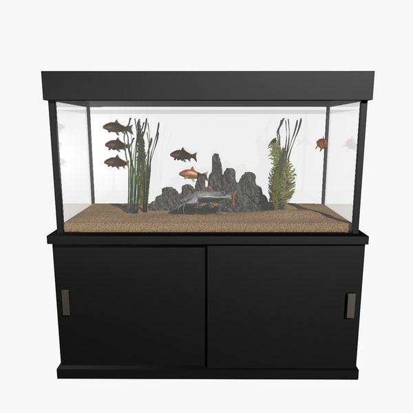fresh aquarium goldfishes catfish 3d c4d
