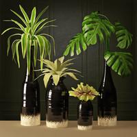 3d plant arrangement