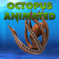Octopus Animated