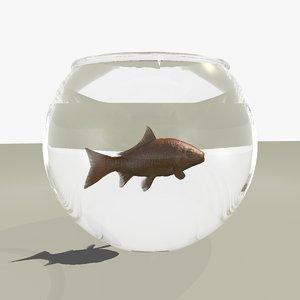 common goldfish fish bowl 3d c4d