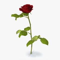3d model rose 3
