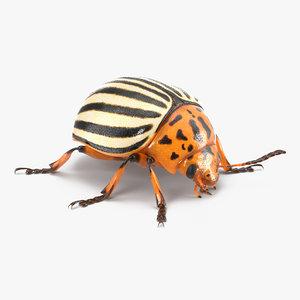 colorado potato beetle 3d 3ds