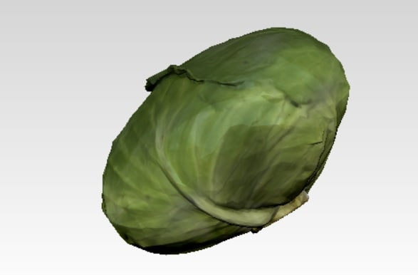 obj cabbage