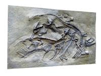 bas-relief dino