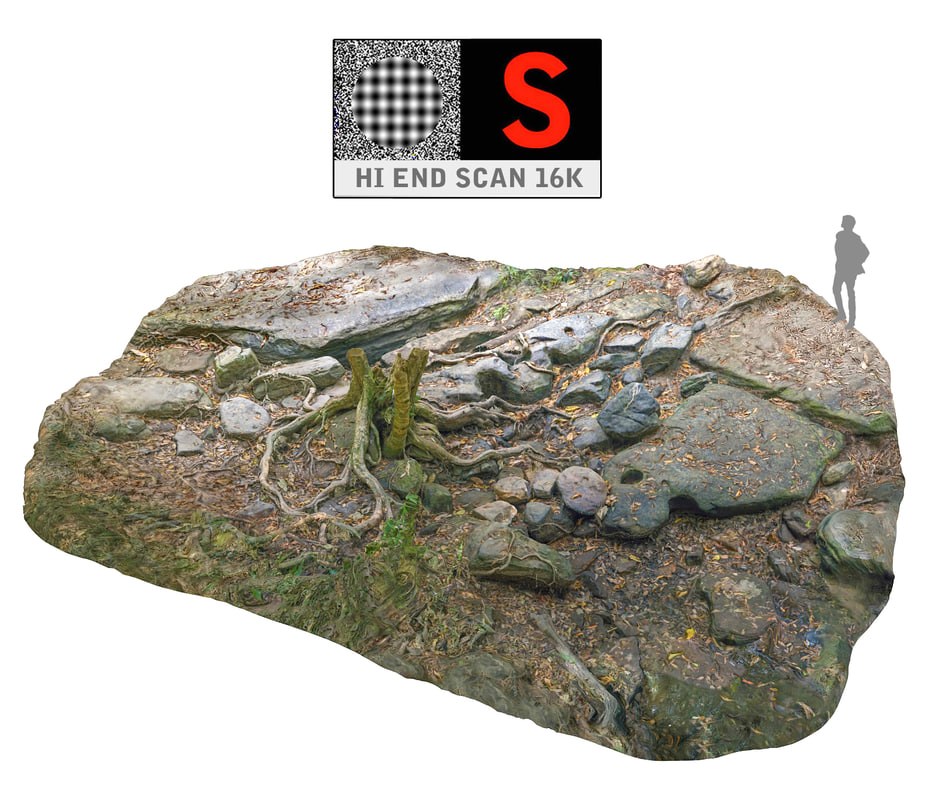 jungle rock ground 16k 3d max