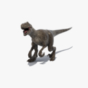 Velociraptor Animated