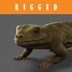 3d lizard rigged model