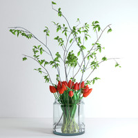 3d model jar tulips branches spring