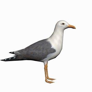 3d seagull realtime model