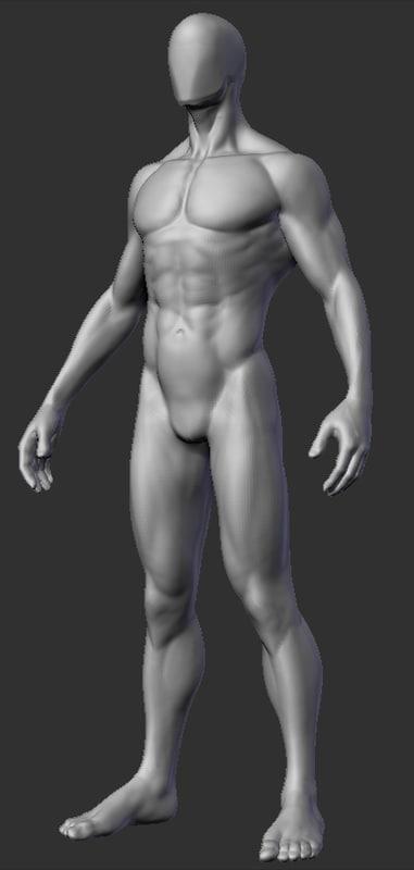 obj anatomy study