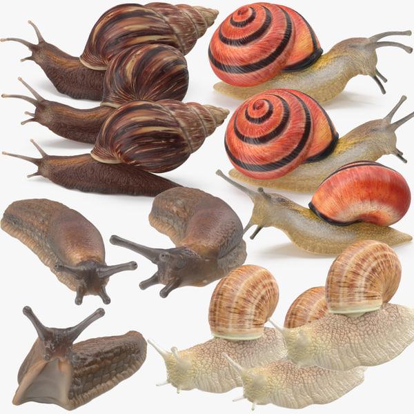 3d snails grove land model