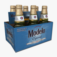 Six Pack of Modelo