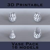 3d model vase pack