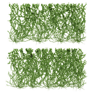 wall ivy leaves 3d max