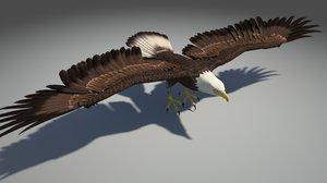 3d model eagle bird