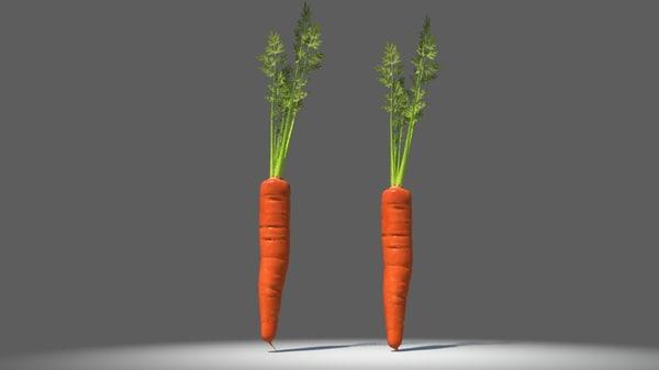 3d carrot
