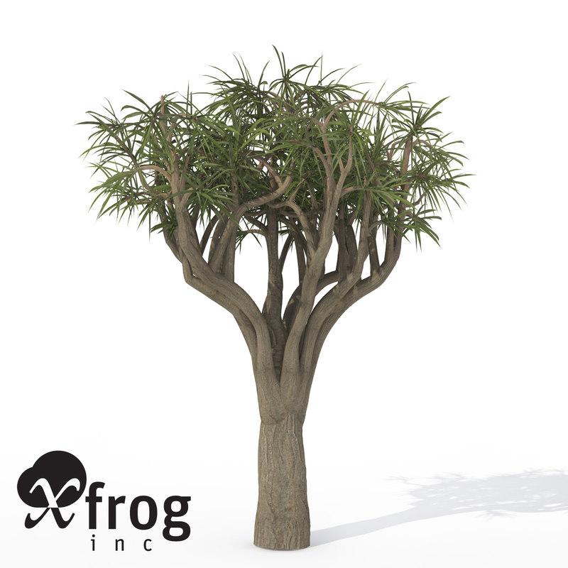 3d model of xfrogplants tree aloe