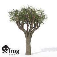 3d model xfrogplants river wild pear