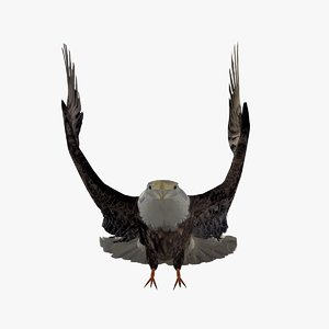 grey eagle flapping wings c4d