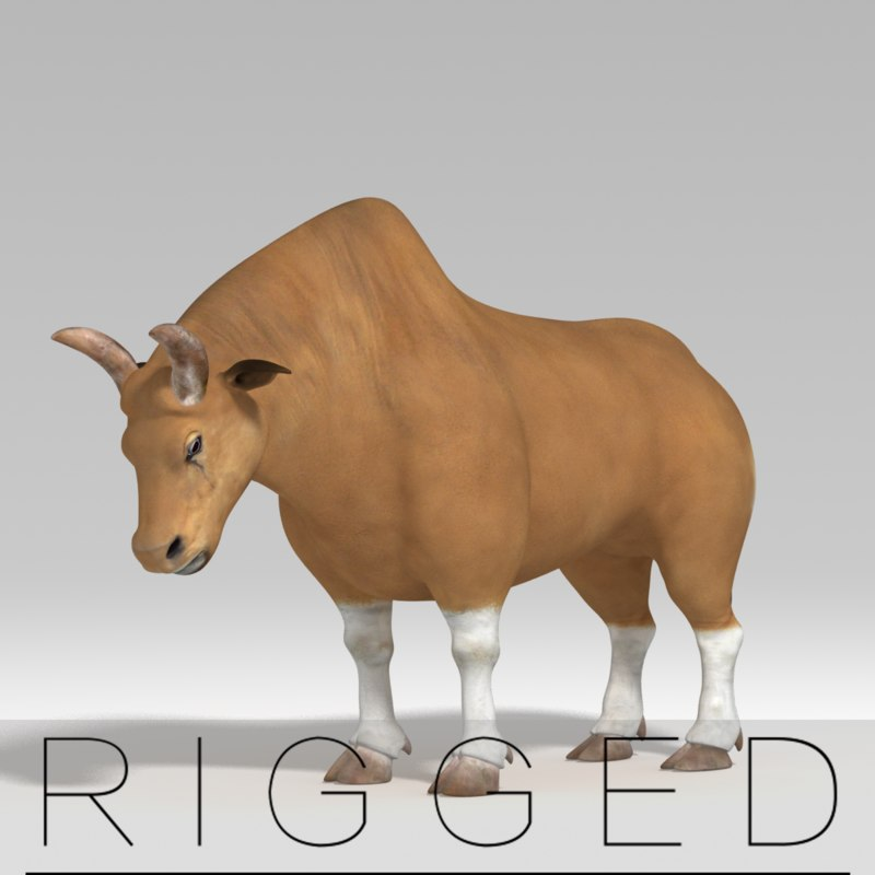 rig bull 3d ma