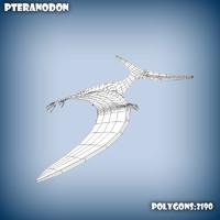base mesh pteranodon 3d model