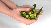 hands olives engraving 3ds