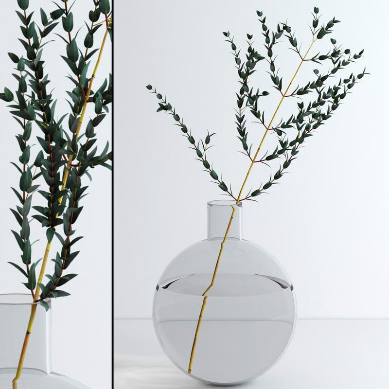 3d model of jar eucalyptus flowers
