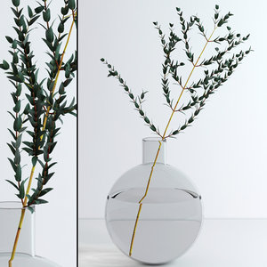 3d model of jar eucalyptus flowers