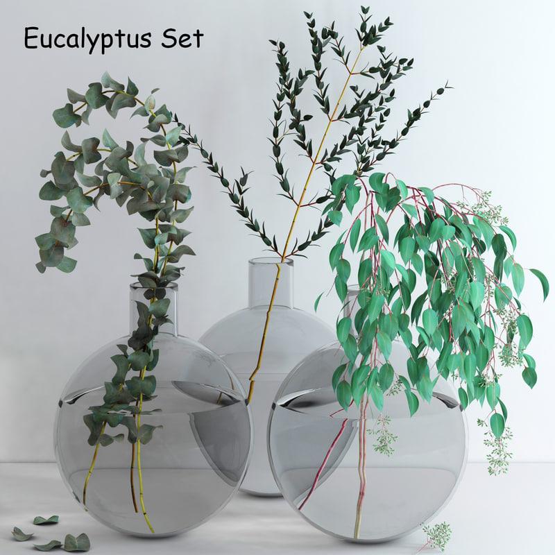 3d set eucalyptus flowers