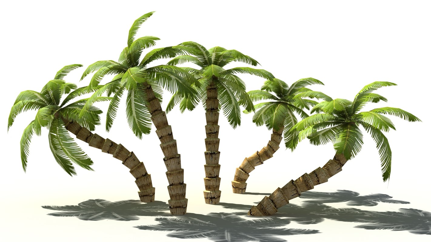 cartoon palm trees 3d model