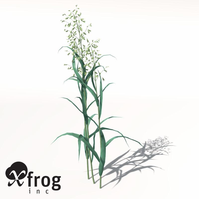 xfrogplants oats obj