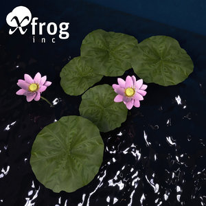 3ds nelumbo plants flower