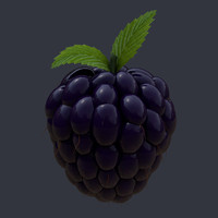 3d model blackberry