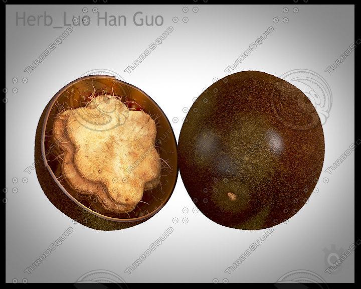 3d model of luo han guo