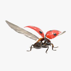 flying ladybug 3d model