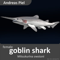 3d model realistic female goblin shark