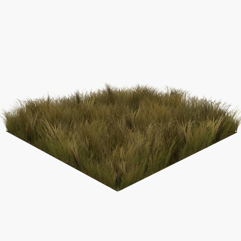 3d model faded grass ready