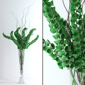 3d model of vase moluccella flowers