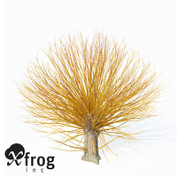 3d golden willow planted